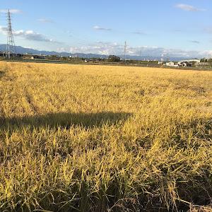 スカイライン ER34 GT-Xターボのカスタム事例画像 uchida_ddさんの2018年11月03日17:28の投稿