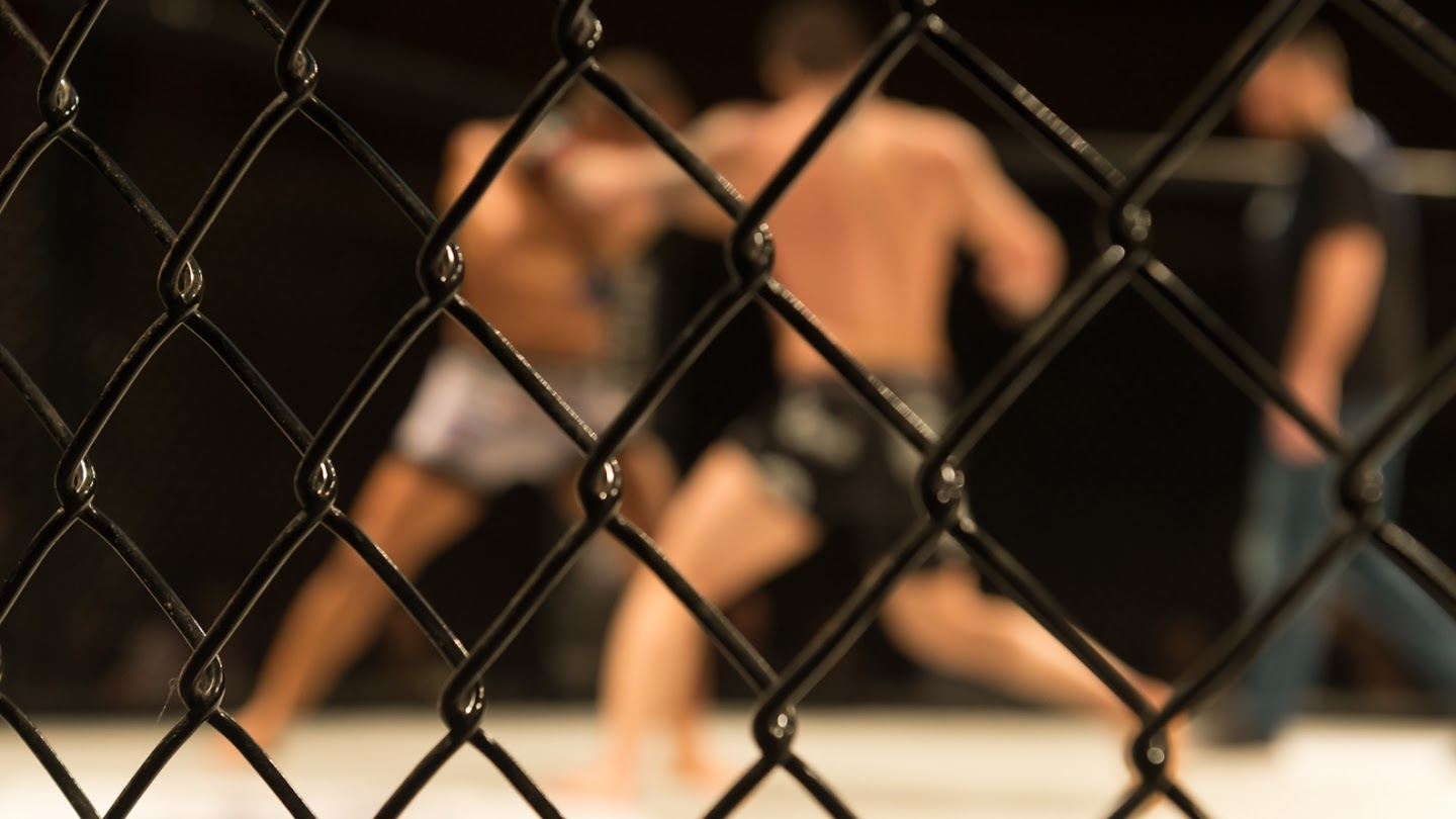 Watch World Series of Fighting 31 live
