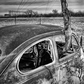 by Ray Ebersole - Transportation Automobiles ( vw, shoot )