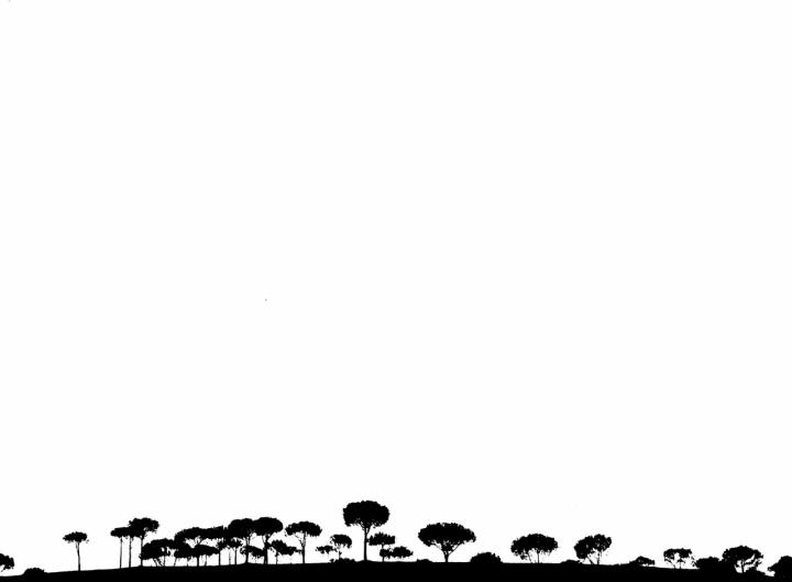 La collina di si