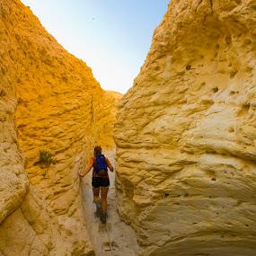 Negev Afternoon by Victor Mukherjee - Landscapes Travel ( desert, woman, negev )