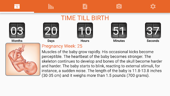 WomanLog Pregnancy Pro- screenshot thumbnail