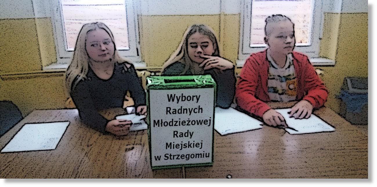 mlodzierzowa rada miasta