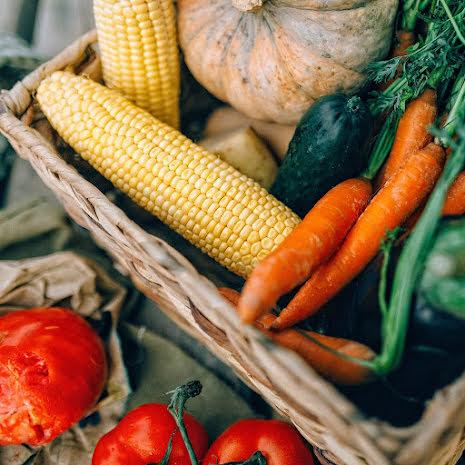 Odlingskurs: Lyckas med din köksträdgård