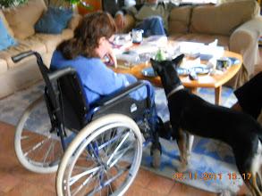 Photo: 05 XI 2011 roku - zagląda mi  do talerza