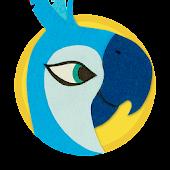 Sweet Tweet the Parrot