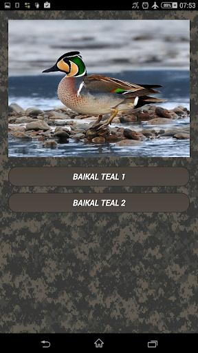Duck hunting calls screenshots 3