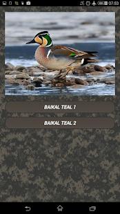 Duck calls - náhled