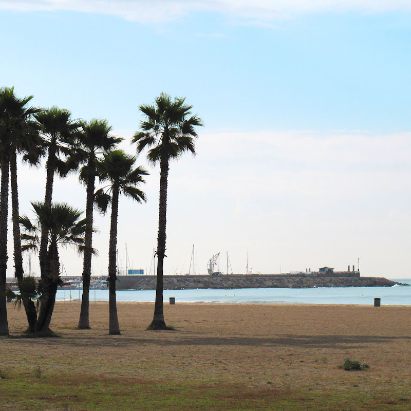 THE VENDRELL COAST