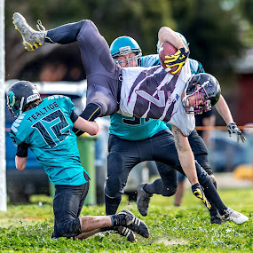 Gridiron Victoria by John Torcasio - Sports & Fitness American and Canadian football ( melton wolves, american football, outdoor, sports, gridiron victoria, ballarat falcons )