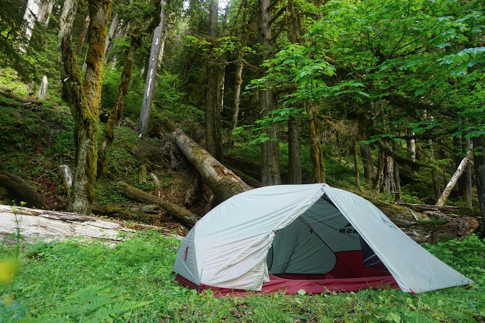 Campsite, Olympic National Park, Washington