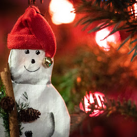 by Mary Phelps - Public Holidays Christmas ( 2018, snowman, ornament, tree, christmas, canon )