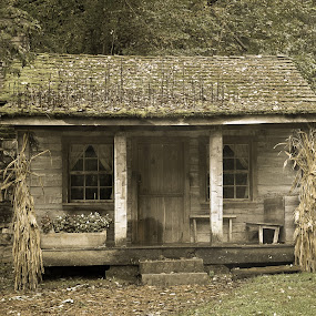 Spring Mill Cabin by Carter Keith - Buildings & Architecture Public & Historical ( cabin, home, house, historic, abandoned,  )
