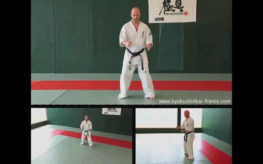 Kyokushin - Hand Techniques screenshot