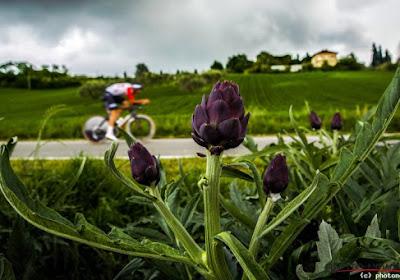 Giro slaat letterlijk en figuurlijk nieuwe weg in: koersbeeld gaat veranderen