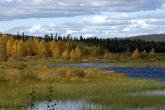 Photo: Ruskan alkua Alajärvellä