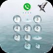 AppLock Theme - Seagulls APK