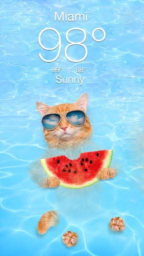 Weather Kitty screenshot 2