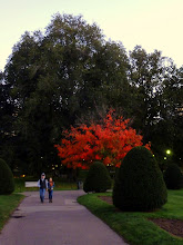Photo: Once more, indian Summer in the George Washington Park.