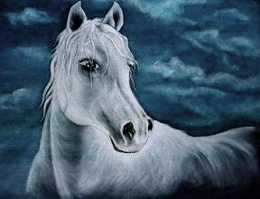 Photo: 310, Нетронина Наталья, Серия Лошадки, Белая лошадь, Масло, бархат (живопись по бархату), 40х30см,