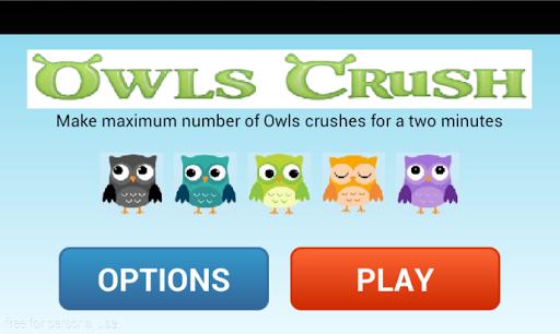Owls Birds Crush