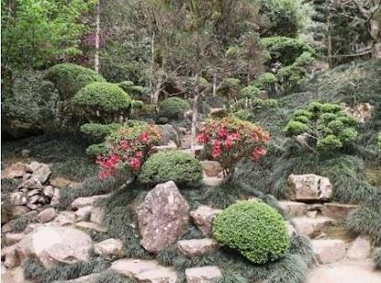 Úžasná japonská zahrada - náhled