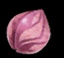 桜色の種子