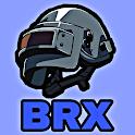 Ipad Model - BRX icon