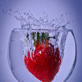 Wild Strawberry by Jaime Rosiles - Artistic Objects Other Objects ( stawberry, art, action )