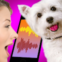 Dog Translator Simulator icon