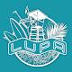 Lupa-tó for PC-Windows 7,8,10 and Mac