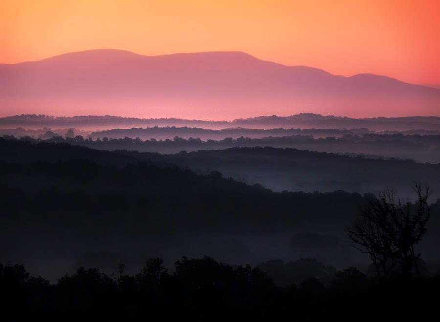 Morning Fog by Gary Pope - Landscapes Mountains & Hills ( fog, tennessee, georgia, sunrise, landscape )
