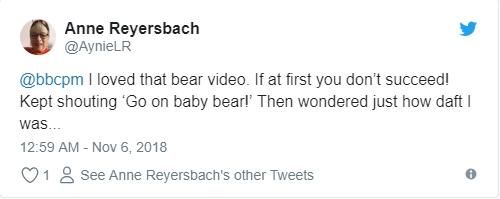 Đoạn clip chú gấu con leo núi truyền cảm hứng cho hàng triệu dân mạng với thông điệp Đừng bao giờ bỏ cuộc nhé!!! - Ảnh 7.