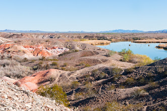 Photo: Near the Rio Grande; Imperial National Wildlife Refuge