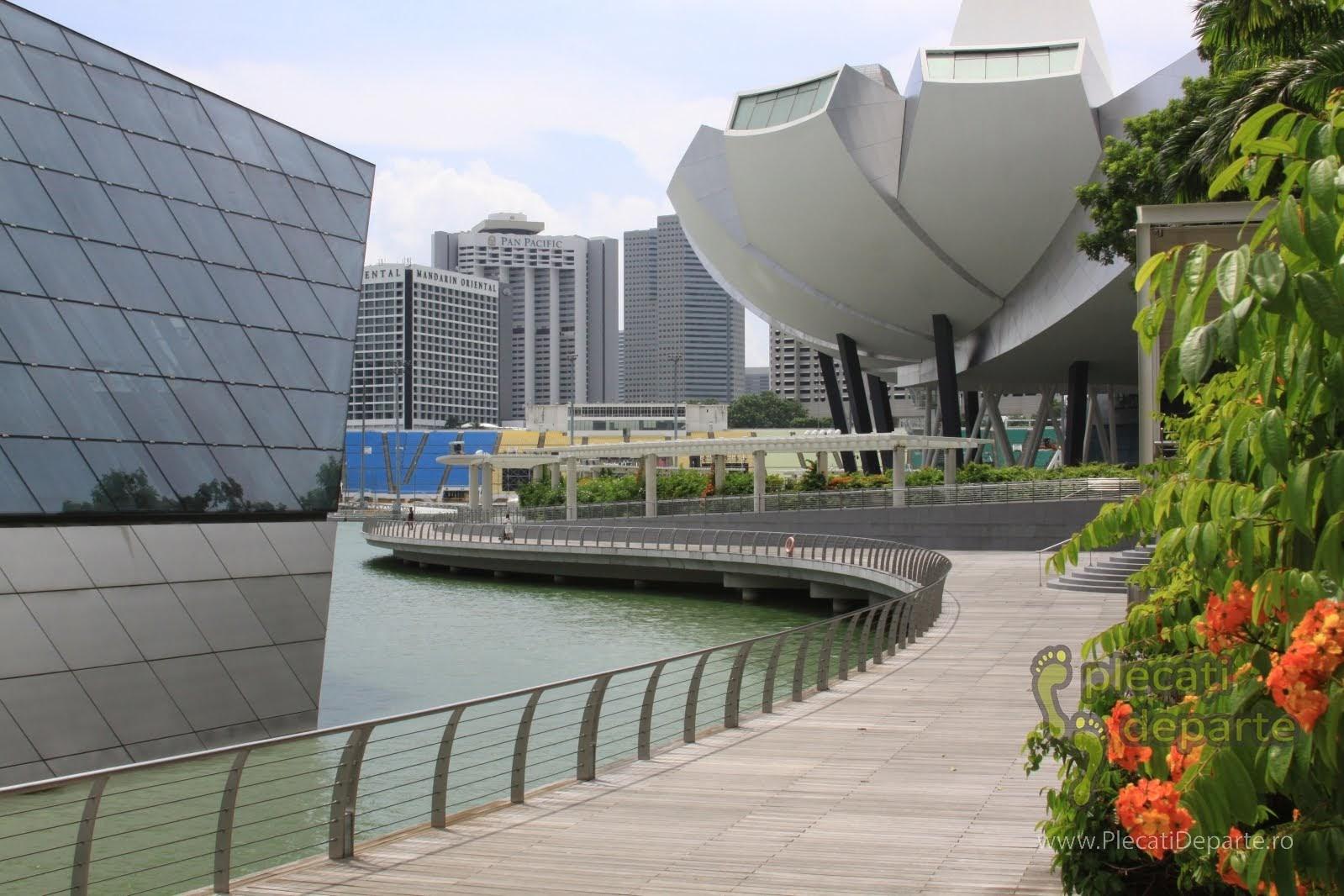 obiective turistice Singapore - Marina Bay - ArtScience Museum o cladire in forma de lotus