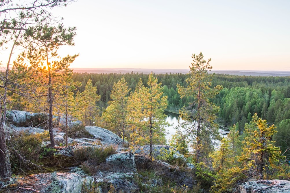 zomer-noord-zweden