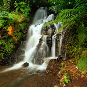 Git Git Waterfall by Anta Abine Hiro - Landscapes Forests