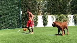 Messi jugando con su perro.