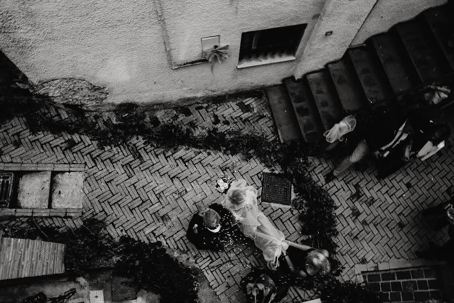 Свадебный фотограф Александр Шамарин (Shamarin). Фотография от 26.01.2017