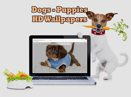 Cute Dogs & Puppies Custom Dog & Puppy NewTab