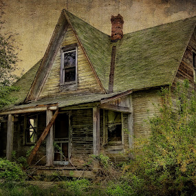 Stories by Vivian Gordon - Buildings & Architecture Homes ( vigor, history, home, dilapidated, old, architecture, withered )