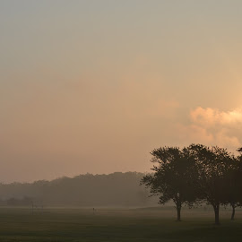 The morning clouds by Thomas Fitzrandolph - Landscapes Sunsets & Sunrises ( sunrises, niagara county ny, trees, landscapes, nikon, morning, lockport ny, sun, mist,  )