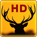Deer Live Wallpapers icon