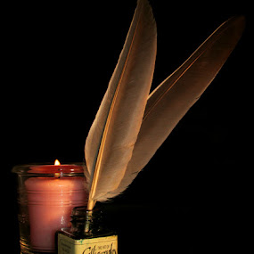 FEATHER PENS by Karen Tucker - Artistic Objects Still Life ( black background, candle, stilllife, still life, art, candle light, plucked feather, feathers, solid background, ink )