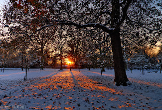 Photo: Keep Me Warm  Good morning Googlers :)  There is nothing like the winter sun on snow to make you feel warmer than you actually are :)