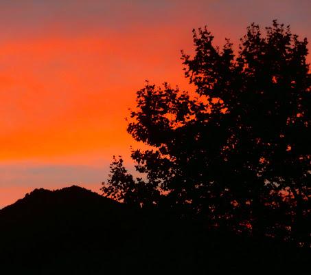 Cinquanta sfumature d'autunno... di Fra_