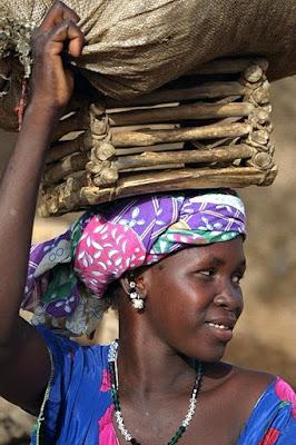 Orgoglio africano di paolo-spagg