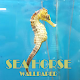 Sea Horse Animal Wallpaper Download on Windows