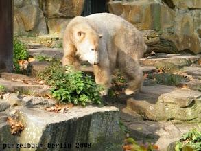 Photo: Knut nimmt die Anlage weiter unter die Lupe ;-)