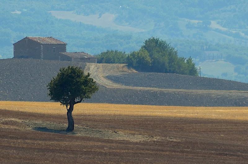Val d'Orcia di s_ornella